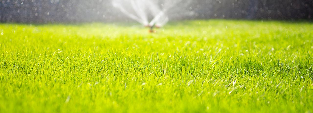 Have you heard about the Thomas Babb Lawn Care referral program?