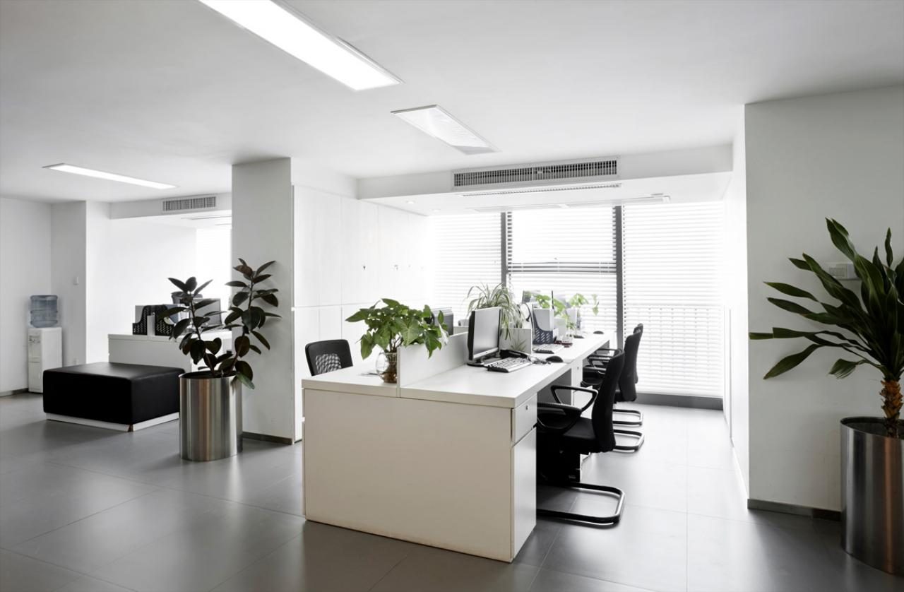Commercial Sanitizing & Disinfecting Services