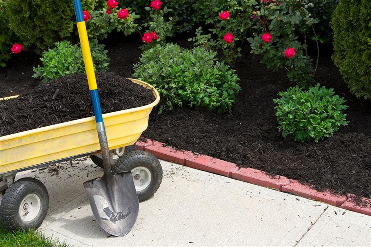 Mulching & Planting