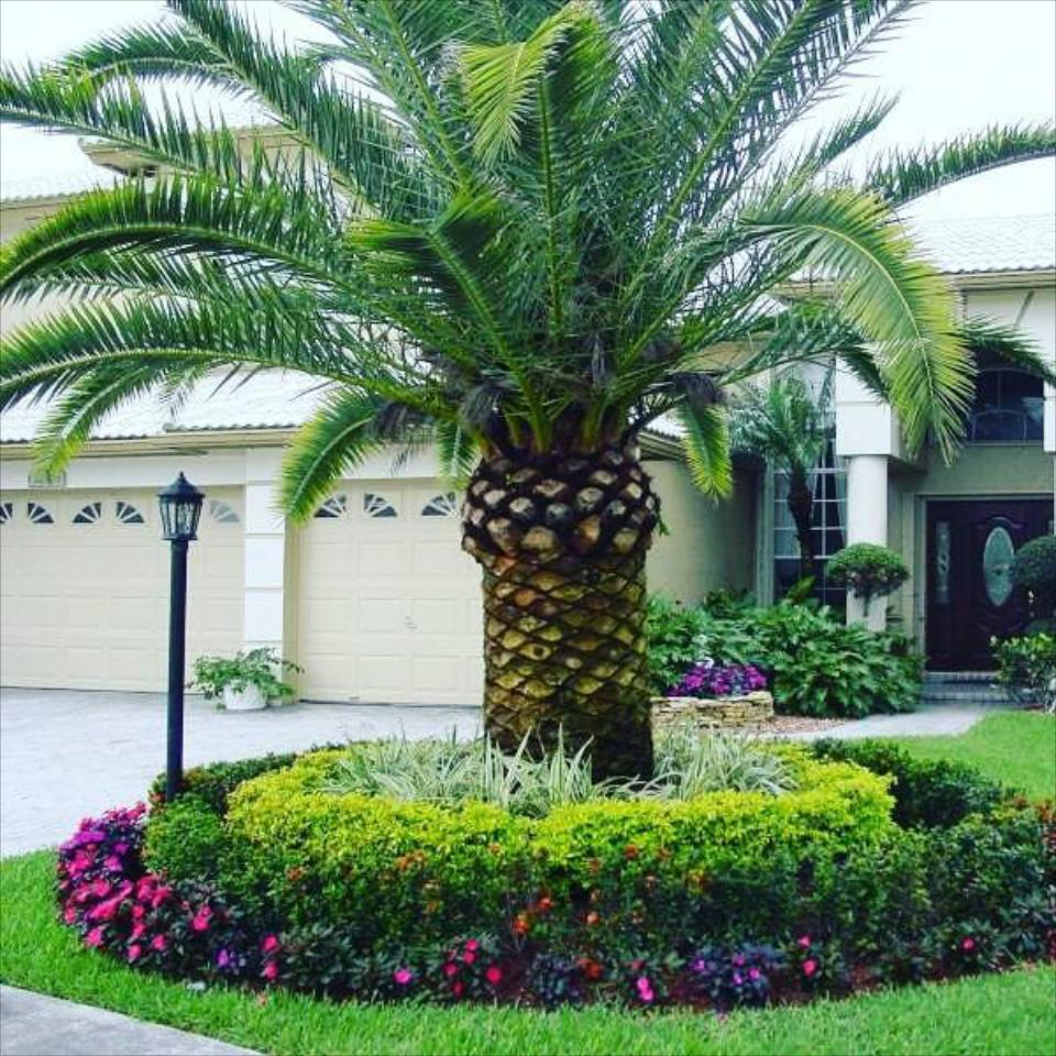 Landscaping Design & Installation