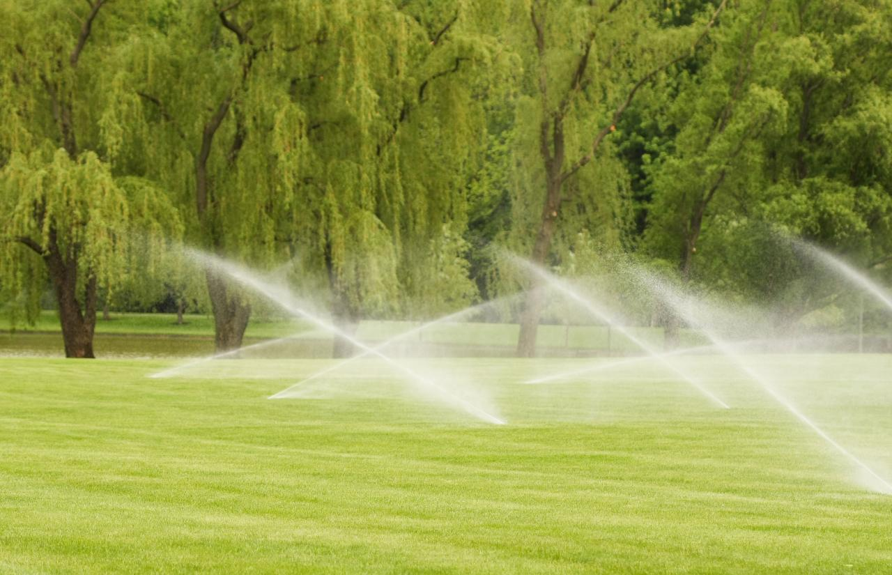 Is your underground sprinkler system leaking? We can fix that!