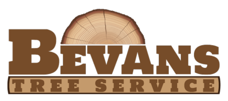 Bevans Tree Service