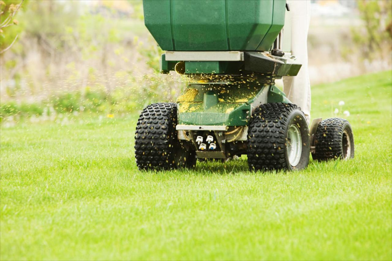 Weed control and Fertilization