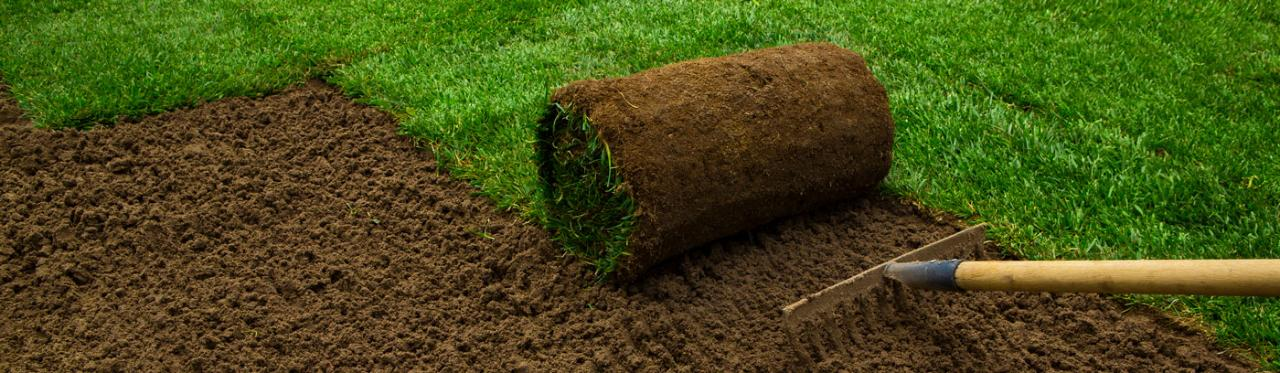 Here Are Five Reasons To Consider Installing A Sod Lawn: