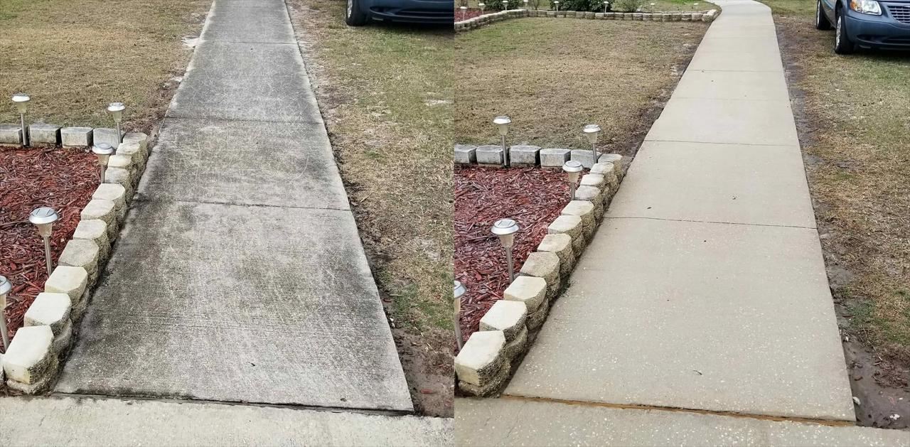 Driveway, Walkway, and Concrete Cleaning