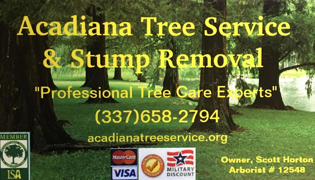 Tree pruning, also known as tree trimming, is the selective removal of tree limbs. There are many reasons to prune or trim tree limbs.