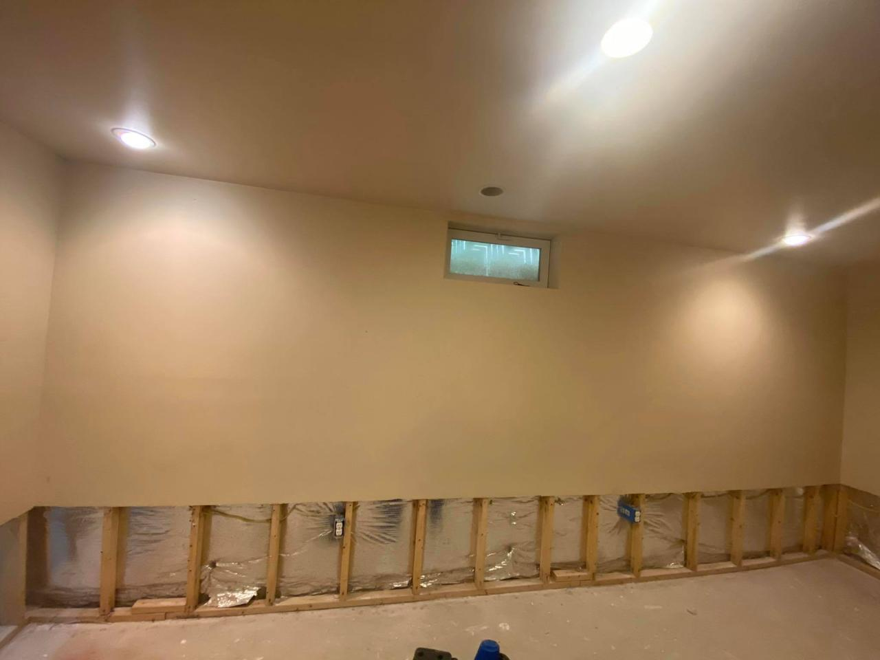 Water Damage & Mold