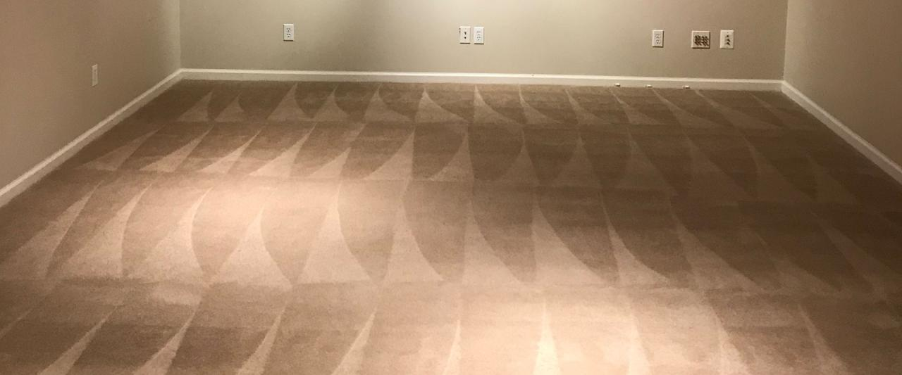 Top Rated Carpet Cleaning Services