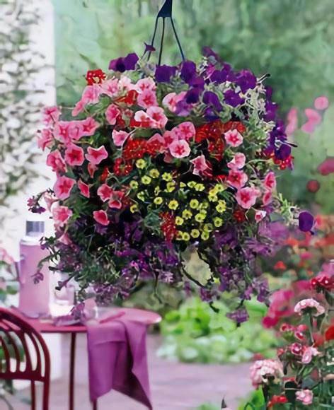 Join us for several weeks of fun-filled basket planting!