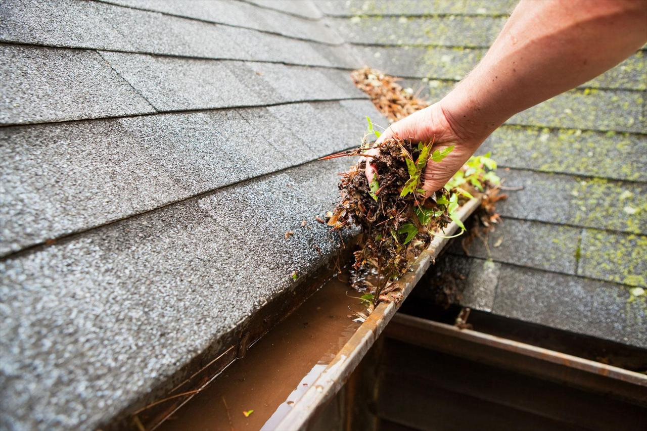 STAY SAFE AND AVOID CLIMBING ON THE ROOF AND LADDERS WITH OUR GUTTER CLEANING SERVICES