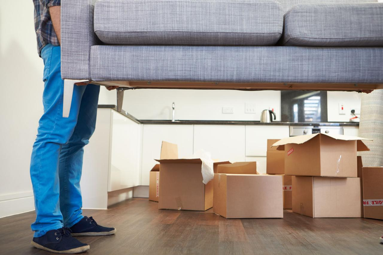 Move In / Out Services