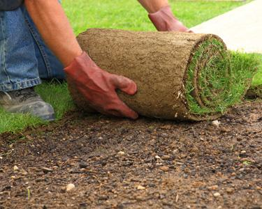 SOD DELIVERY & INSTALLATION