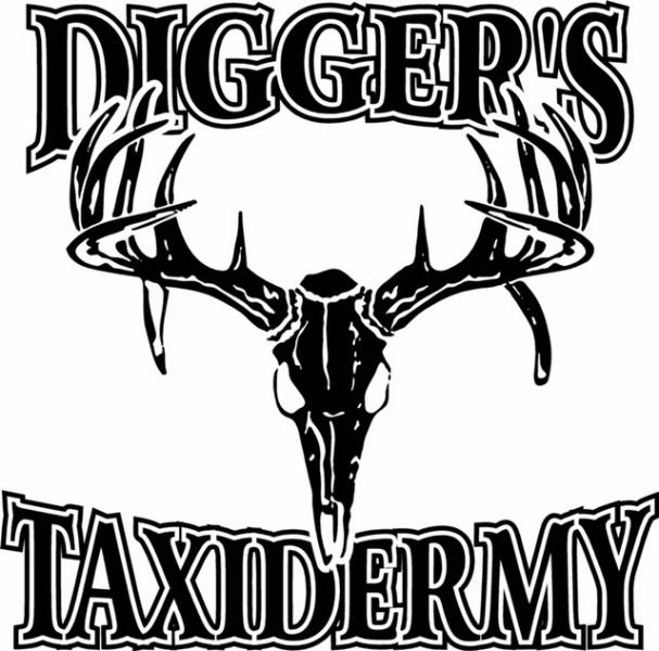 Diggers Taxidermy