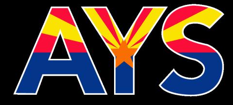 AYS Arizona Power Washing and Mobile Detailing
