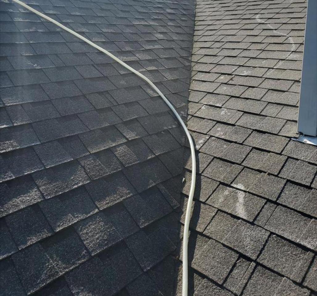 Soft Wash Roof Washing