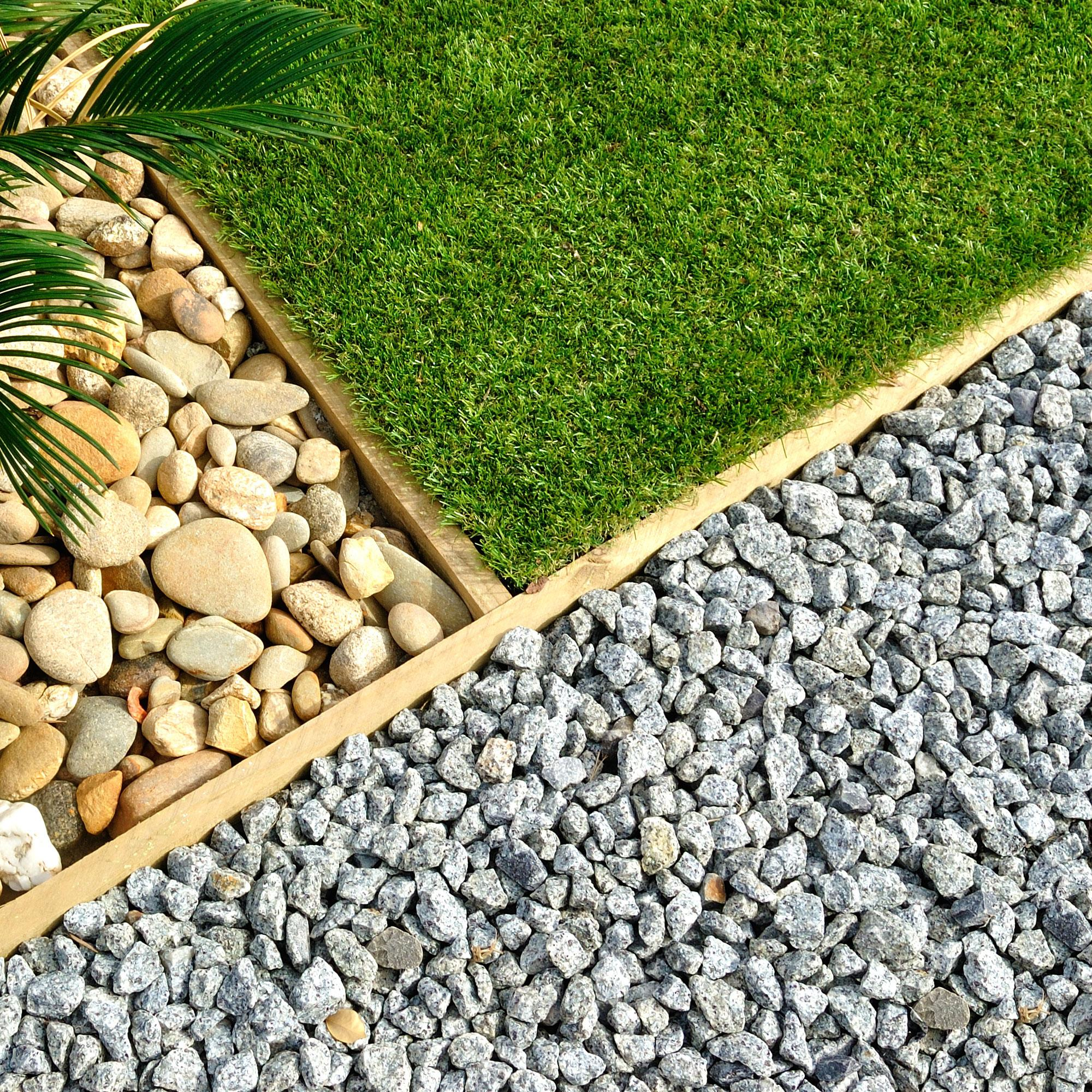 Bring your backyard to life!