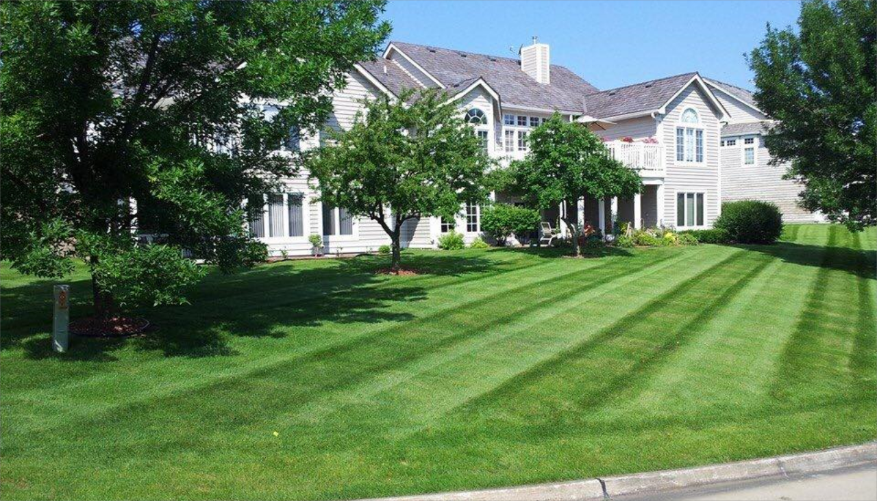 RESIDENTIAL AND COMMERCIAL LANDSCAPING AND LAWN CARE