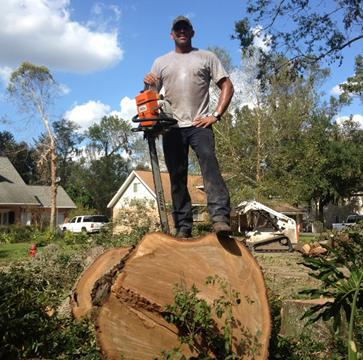 There are many reasons why trees may need to be removed from a property.We specialize in dangerous tree removal have the experience and equipment to handle your most difficult trees are licensed and insuredoffer free estimates
