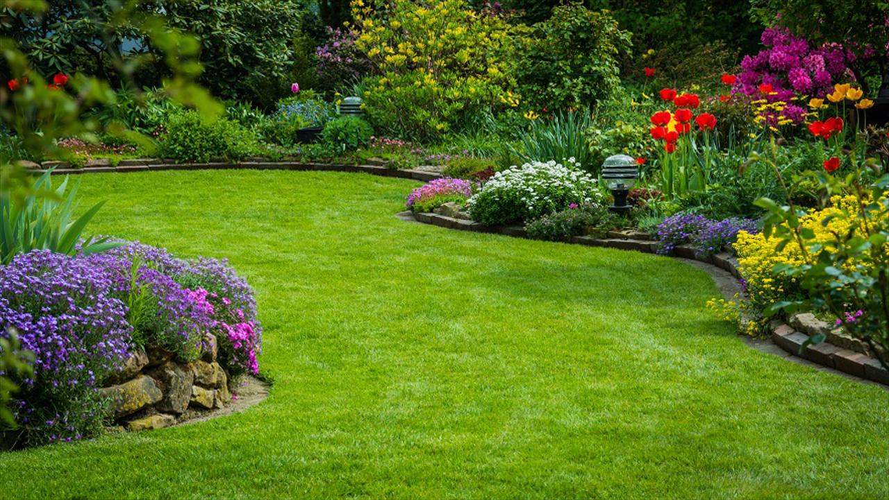 Benefits of Low-Maintenance Lawn Care