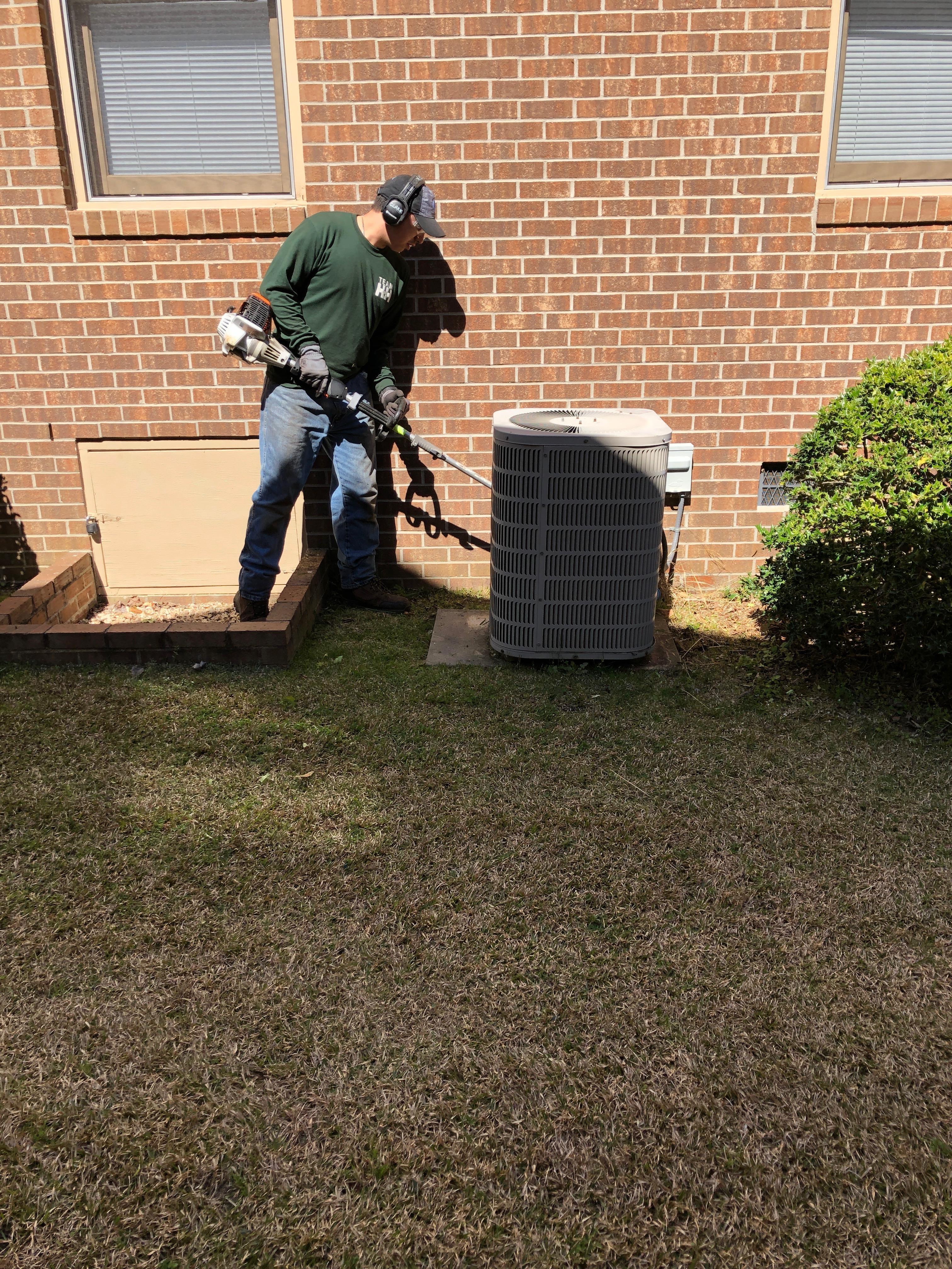 Maintain a Healthy Lawn All Season Long