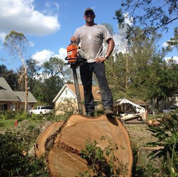 Scott Horton: Arborist #12548