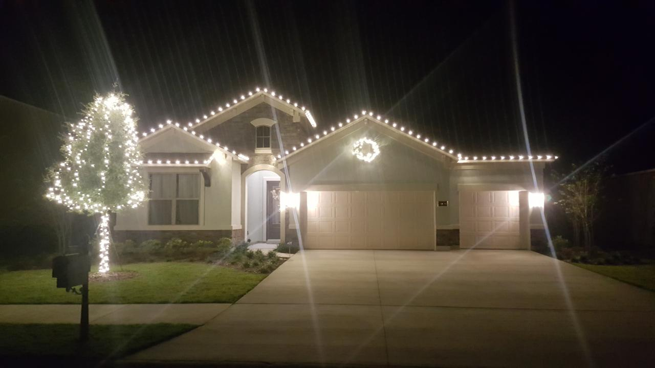 Professional Commercial Holiday Lighting Services
