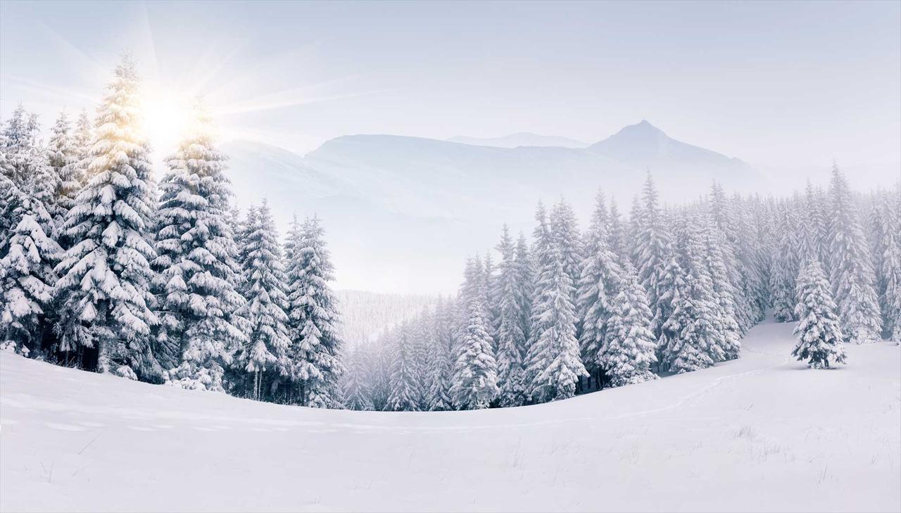 SNOW REMOVAL & DE-ICING