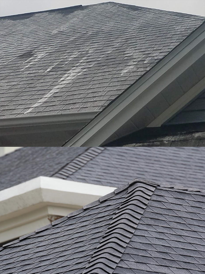 Edgewood Roof Cleaning